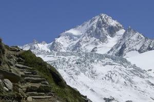 Alpine Footprints Consultancy